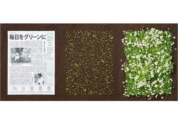 per-fare-un-albero-ci-vuole-il-giornale-10-02-2016-3