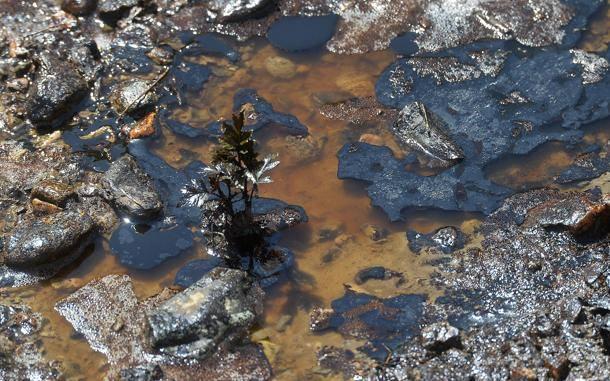 2016 04 22 sversamento petrolio 06