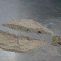 polvere assorbente per idrocarburi