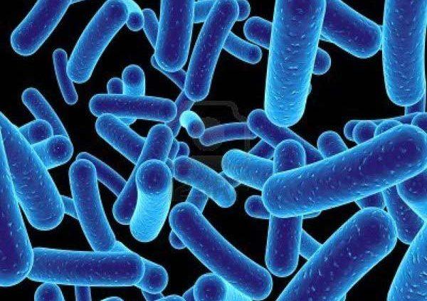 batteri antinquinamento
