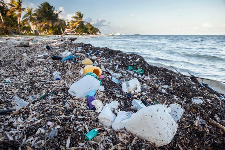 giornata mondiale dell'ambiente lotta alla plastica 2